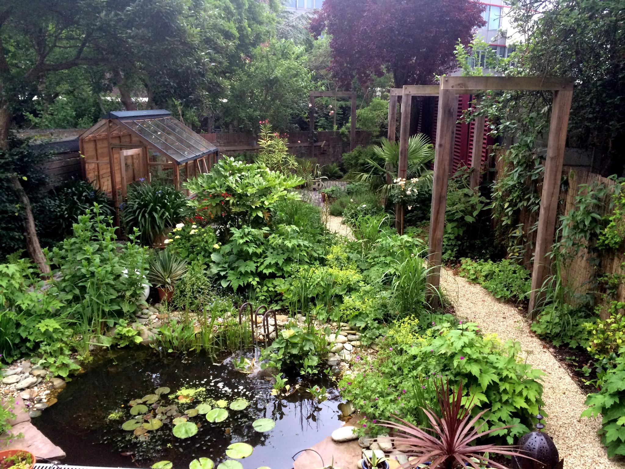 Alison S Gardens Mediterranean Garden: Look : A Dutch Mediterranean Garden