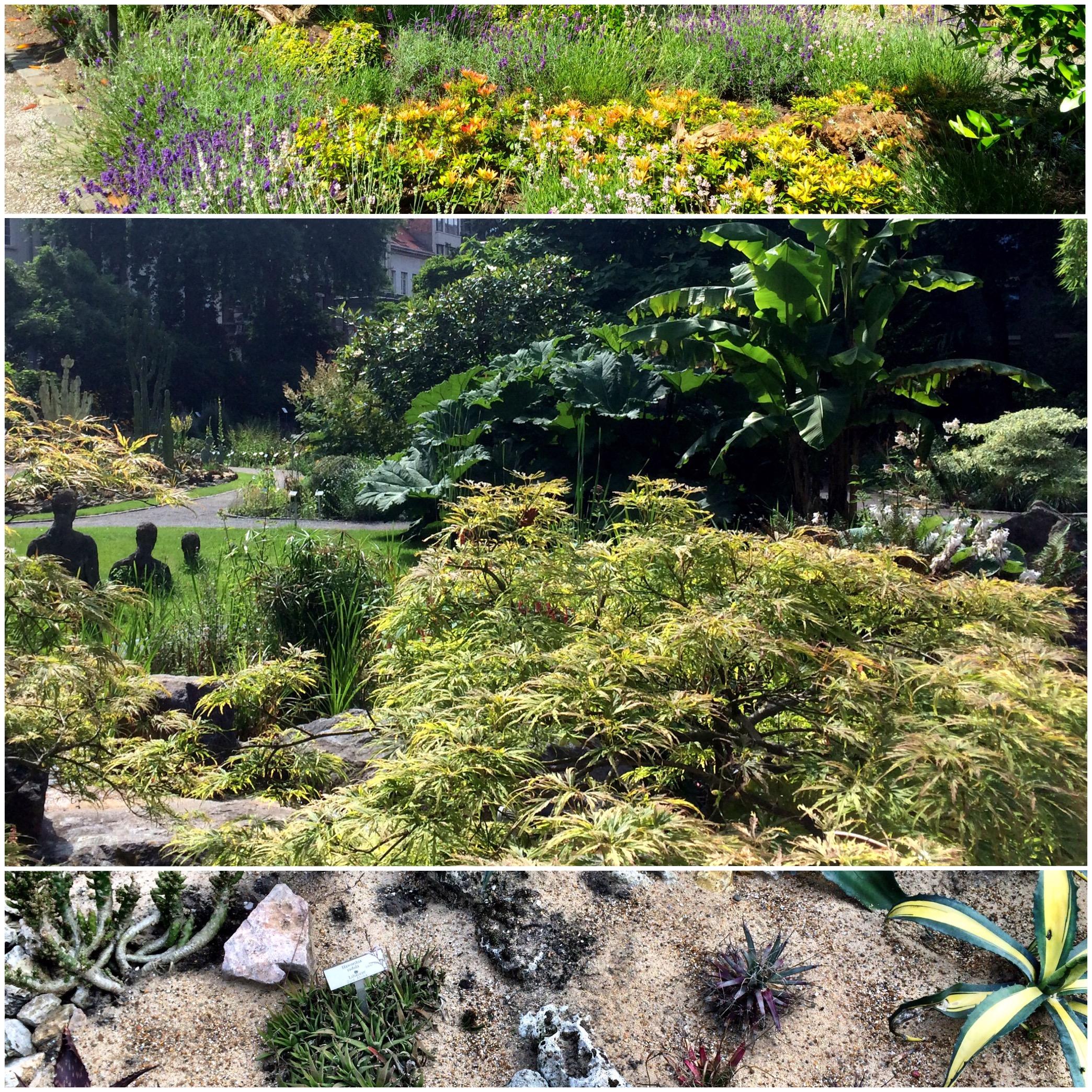 Visit : Antwerpu0027s Botanical Garden