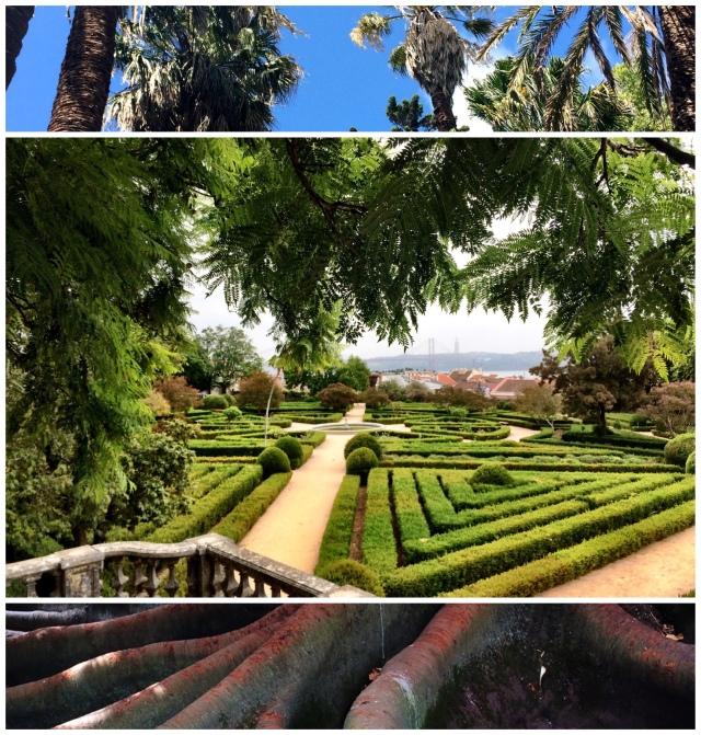 Visit : Botanical Gardens of Lisbon – Springhill Stories